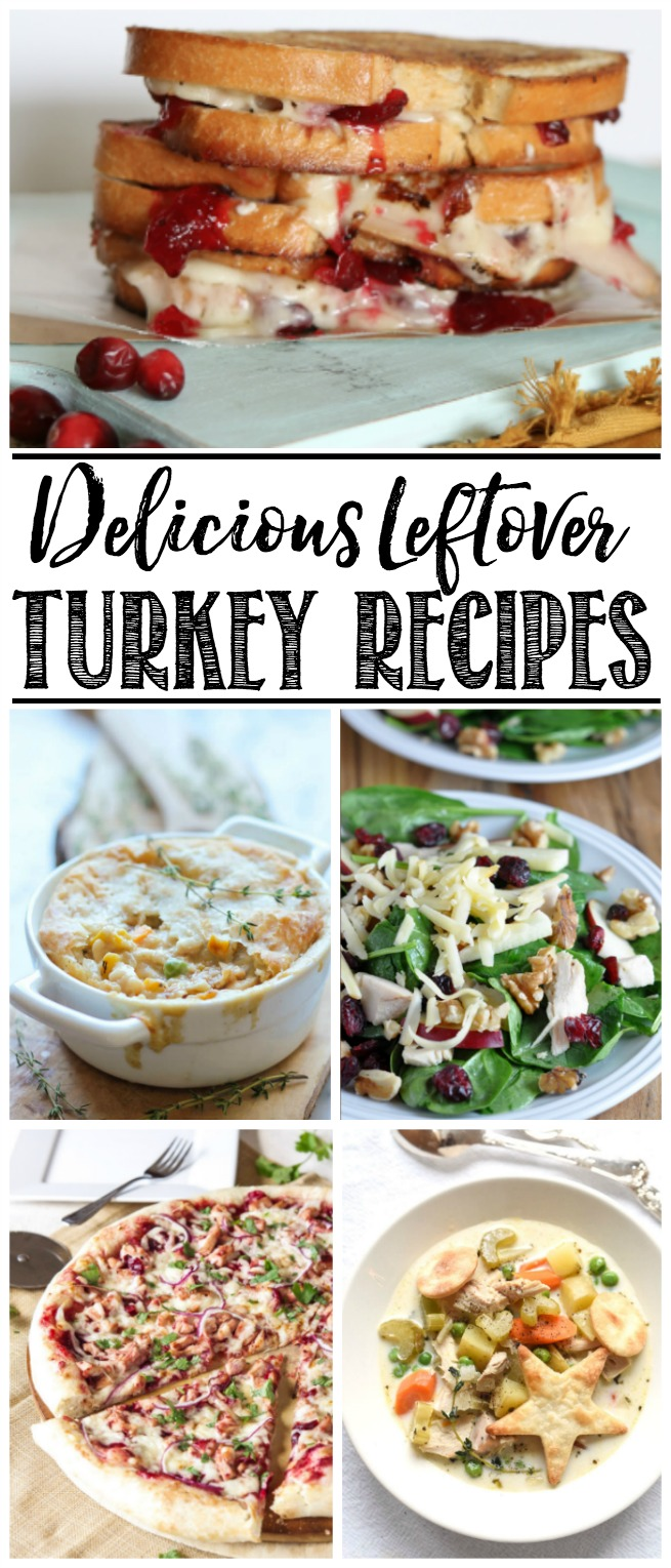 Delicious turkey recipes - perfect for leftover turkey from Thanksgiving or Christmas!