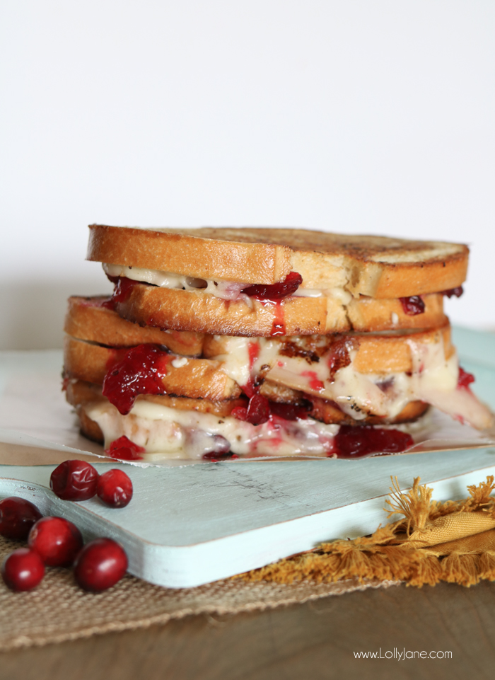 thanksgiving-cranberry-turkey-grilled-cheese-provolone-sandwich