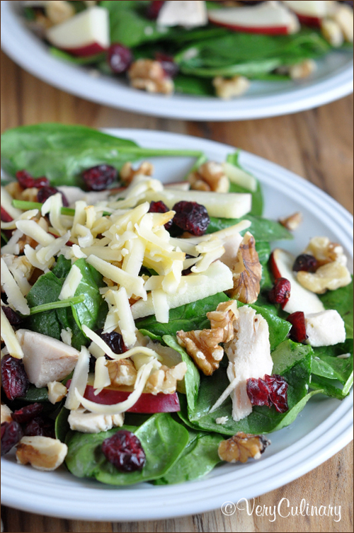 turkey-cranberry-salad
