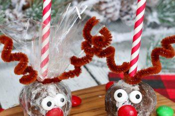 Reindeer Donut Holes