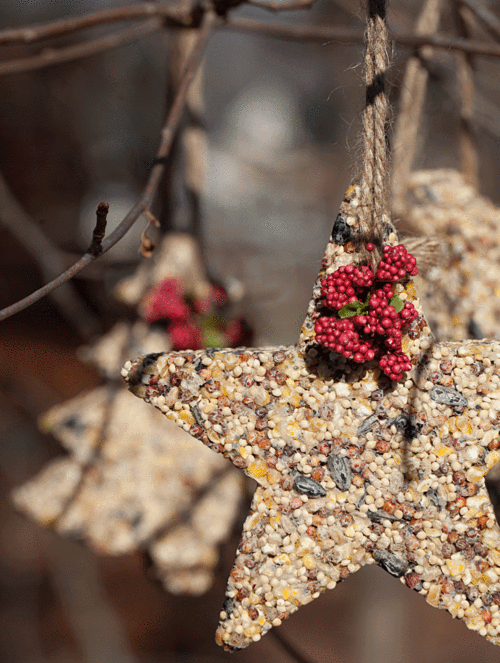 diy-birdseed-ornaments