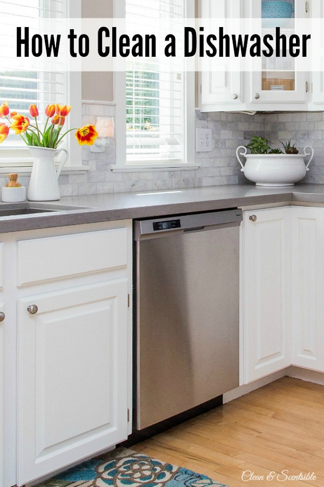 Great kitchen cleaning tips for EVERYTHING in your kitchen!