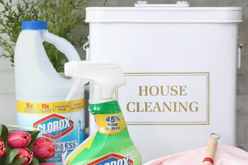 Spring Cleaning Tips Using Bleach