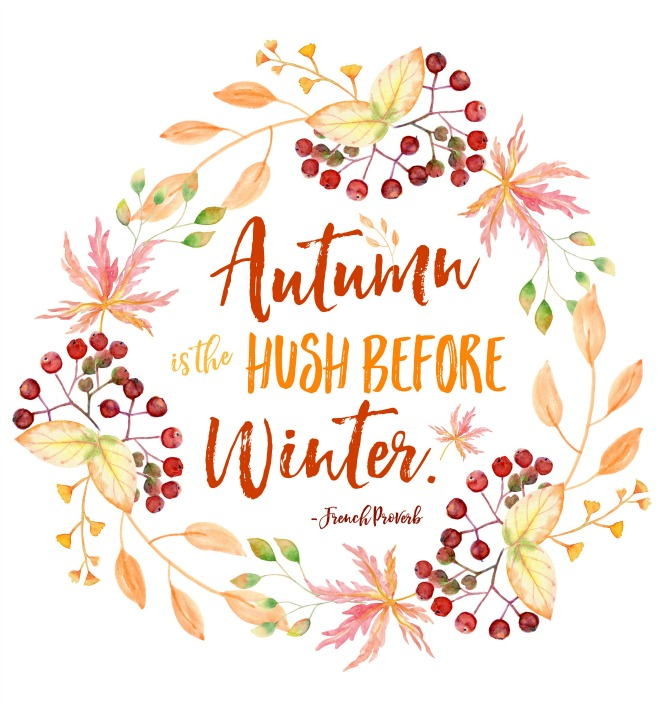 Gorgeous collection of free autumn printables. These are such a quick and inexpensive way to decorate your home for fall.