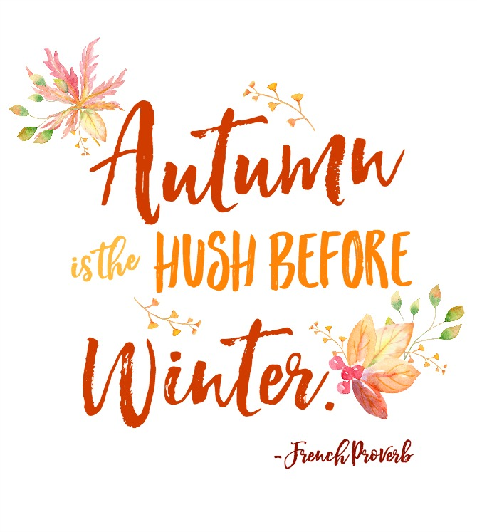 Gorgeous collection of free autumn printables. This is such a quick and inexpensive way to decorate your home for fall.