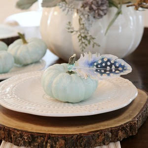 Quick and easy 10 minute decorating ideas for Fall. Pretty feather place cards for a fall tablescape or Thanksgiving dinner.
