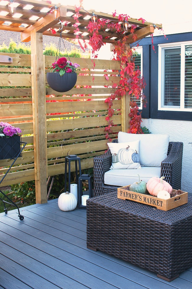 Fall back patio with purple fall planters.
