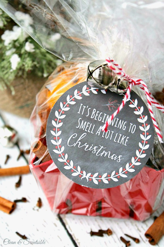 Christmas simmering potpourri packaged up with a free printable tag for a cute Christmas gift.