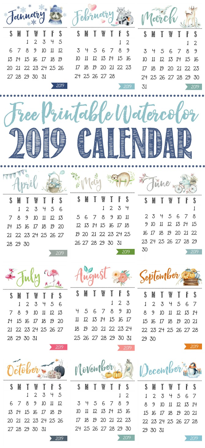 image regarding Cute Free Printable Calendars called Totally free Printable Calendar - Contemporary and Scentsible