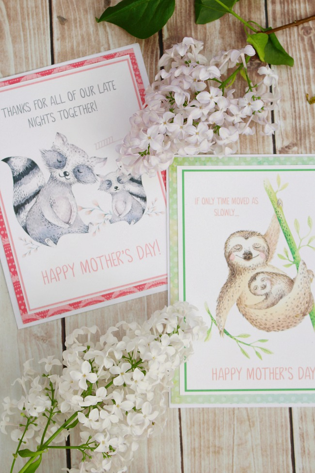 picture relating to Printable Mothers Day Cards to Color known as No cost Printable Moms Working day Playing cards - Refreshing and Scentsible