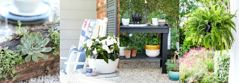 Beautiful collection of outdoor flowers and planters.