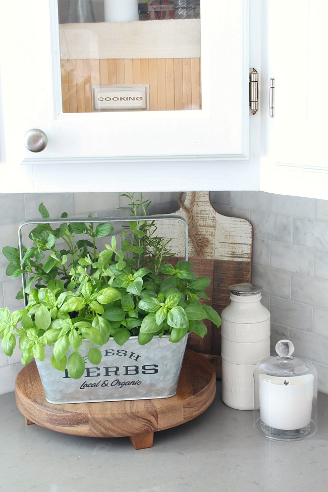 Fresh herb garden in a galvanized bucket for the kitchen counter.