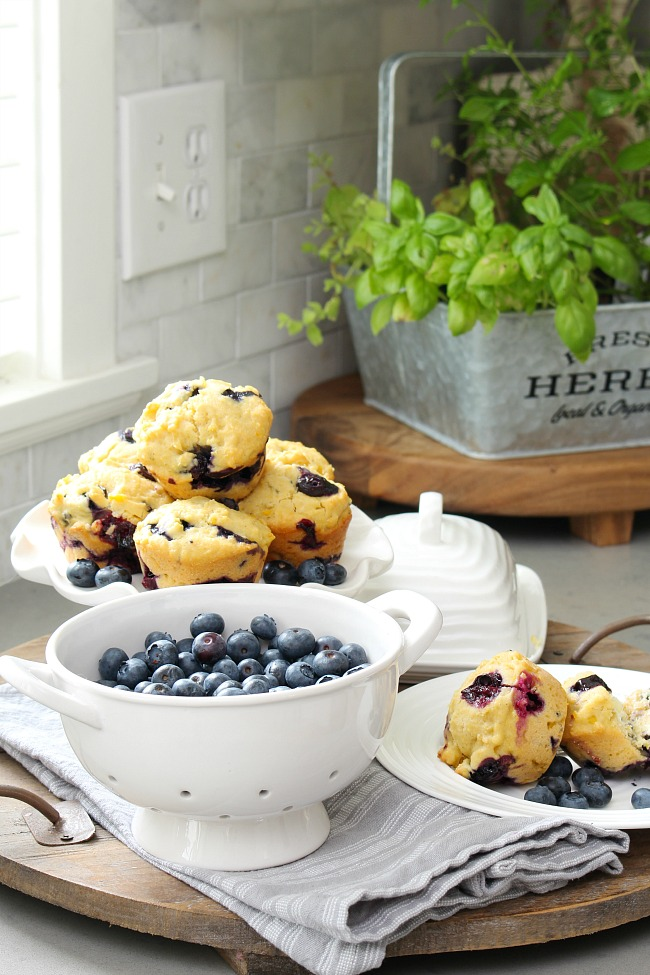 Blueberry cornmeal muffin recipe. Fresh blueberries in a colander with blueberry cornmeal muffins on a pie plate.