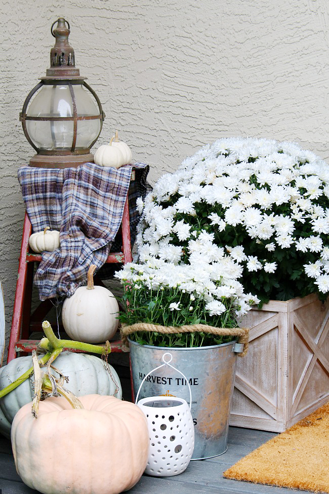 Front Porch Fall Decor.Fall front porch using mums, pumpkins, and a few vintage touches.
