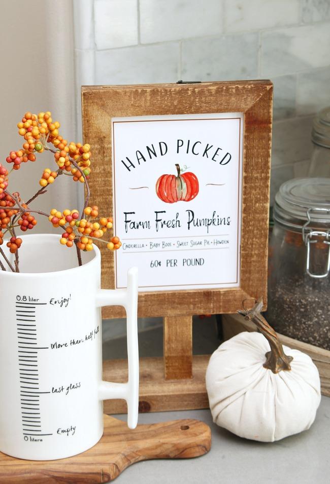 Hand Picked Farm Fresh Pumpkin fall printable in a wood frame.