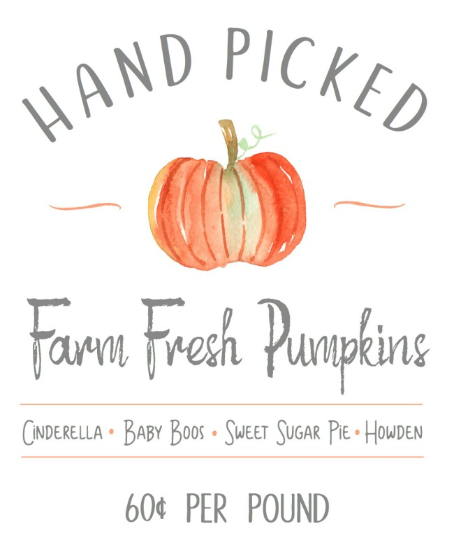 Hand Picked Farm Fresh Pumpkins free fall printable. Fits in with any farmhouse style decor.