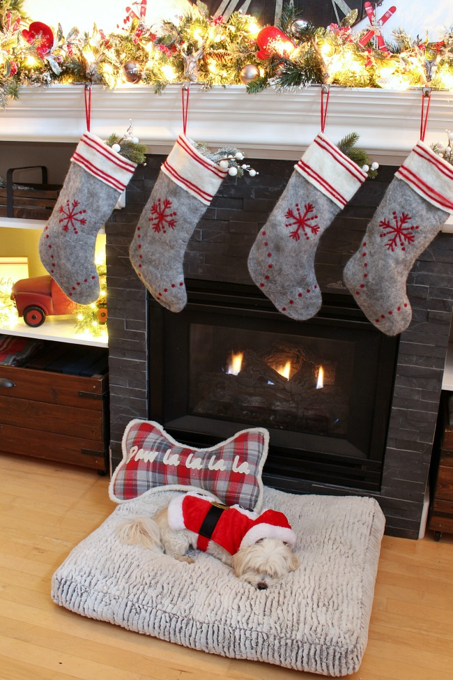 Pretty Christmas mantel with felted wool stockings. Glowing Christmas lights with cute dog in a Santa outfit.
