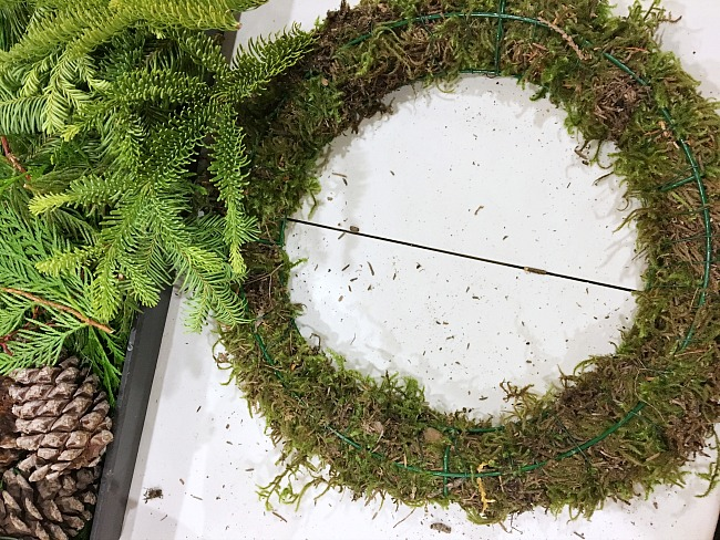 Easy DIY fresh Christmas wreath tutorial using a moss filled wire wreath form.