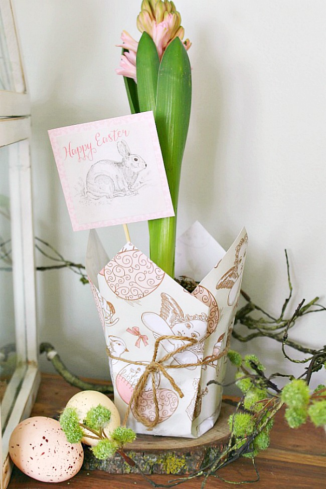 Spring hyacinth planter wrapped up with free printable Easter paper and Easter gift tag.