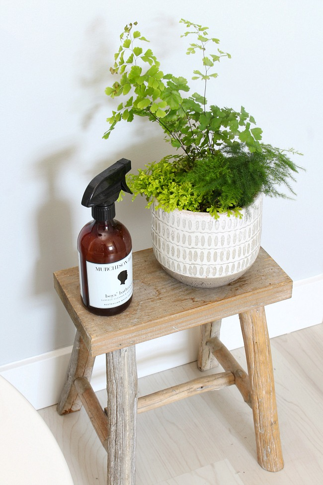 Wood stool in a coastal style bathroom with air spray and a planter.