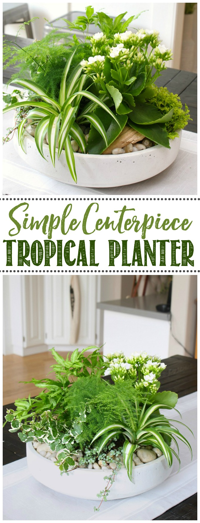 DIY tropical planter centerpiece in a modern planter.