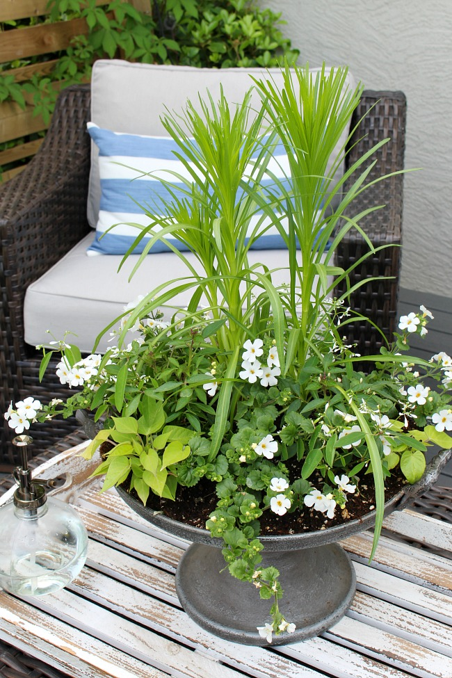 Pretty summer planter centerpiece with a variety of white flowers.