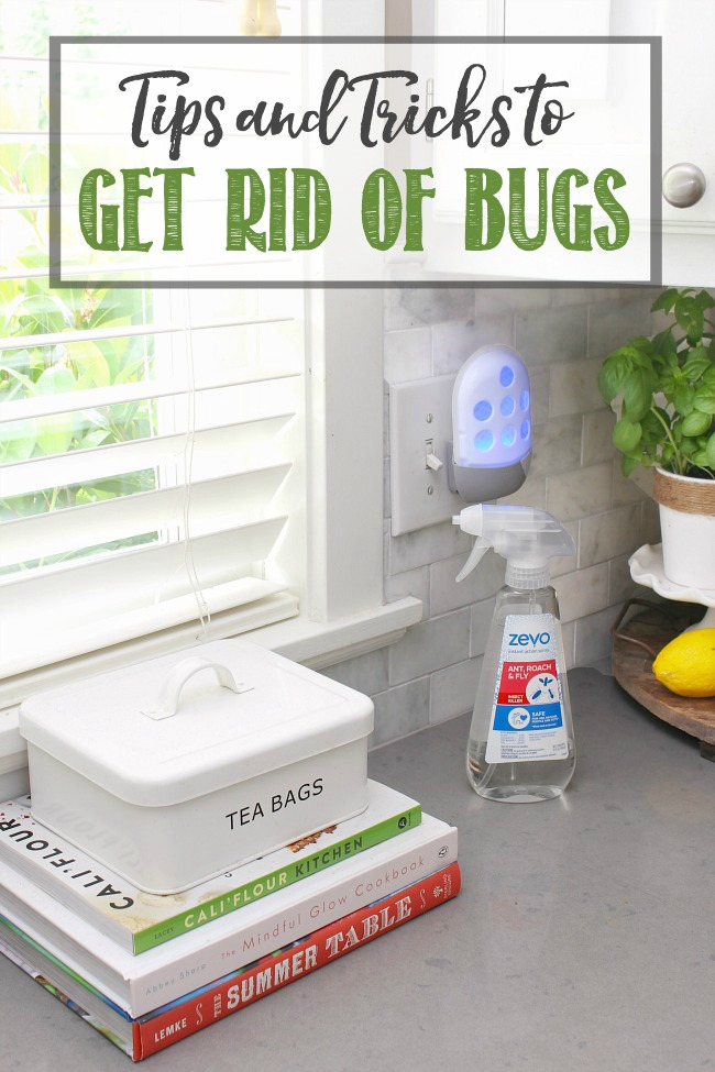 Tips and Tricks to Get Rid of Bugs. White farmhouse kitchen with Zevo pest control spray and trap.