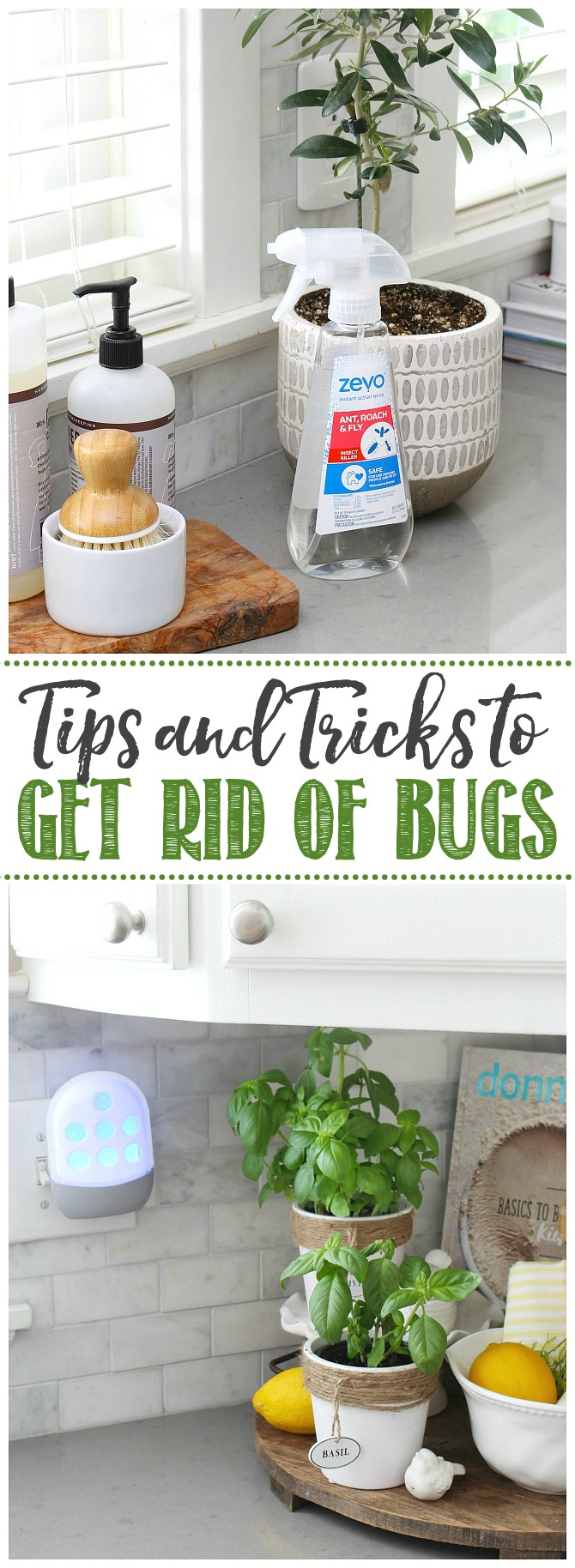 How To Safely Get Rid Of Bugs Indoors Clean And Scentsible