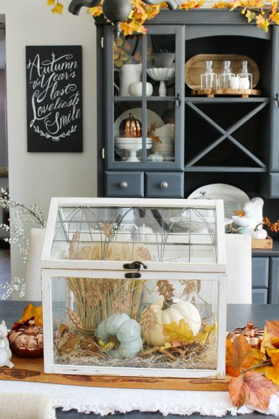 Pretty white terrarium with pumpkins and wheat for a beautiful fall centerpiece.