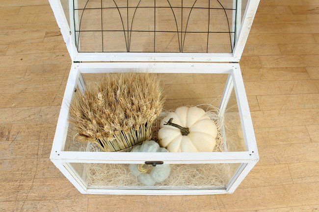 White terrarium with pumpkins and wheat step by step tutorial.