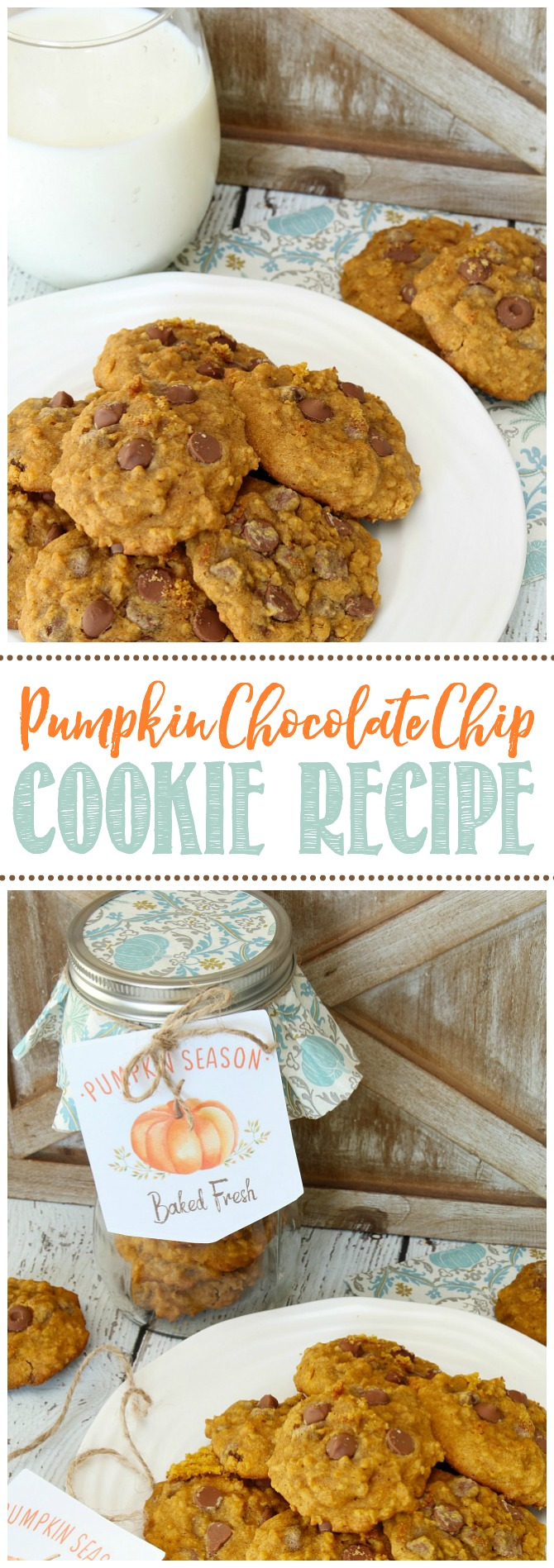 Pumpkin chocolate chip cookies on a plate with a glass of milk and a cute idea to package them up in a mason jar for a sweet fall gift!
