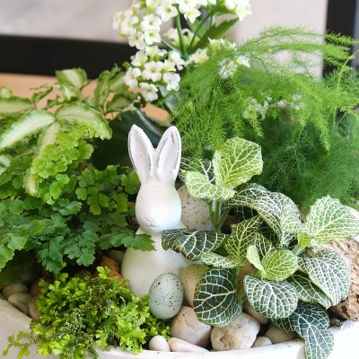Easter planter with tropical plants and Easter bunny.
