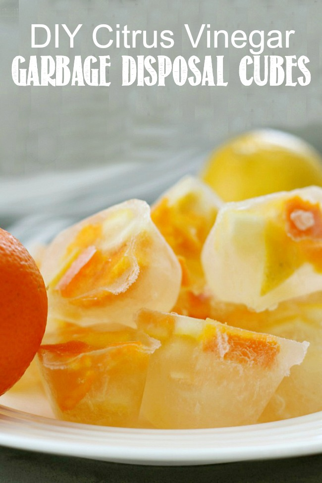DIY citrus vinegar cubes to clean the garbage disposal.