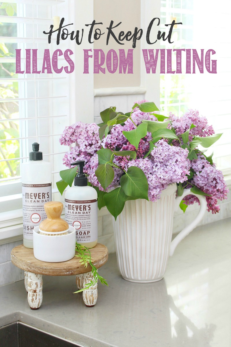 Lilacs in a vase by the kitchen sink.