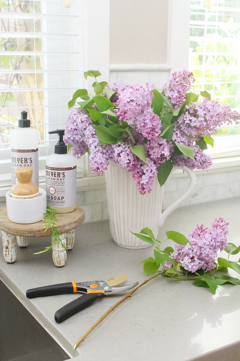 Lilacs in a vase with pruning sheers.