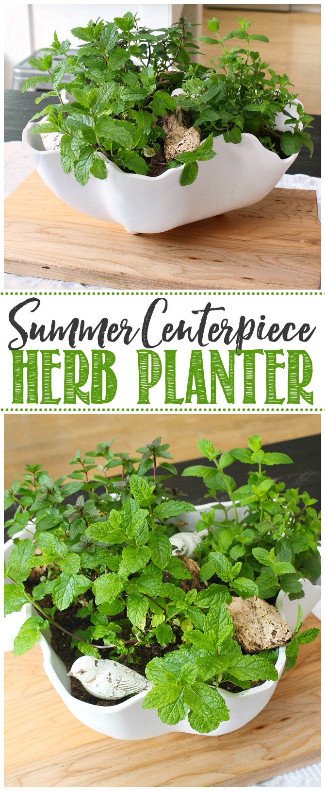 Summer centerpiece using mint herbs in a white bowl.