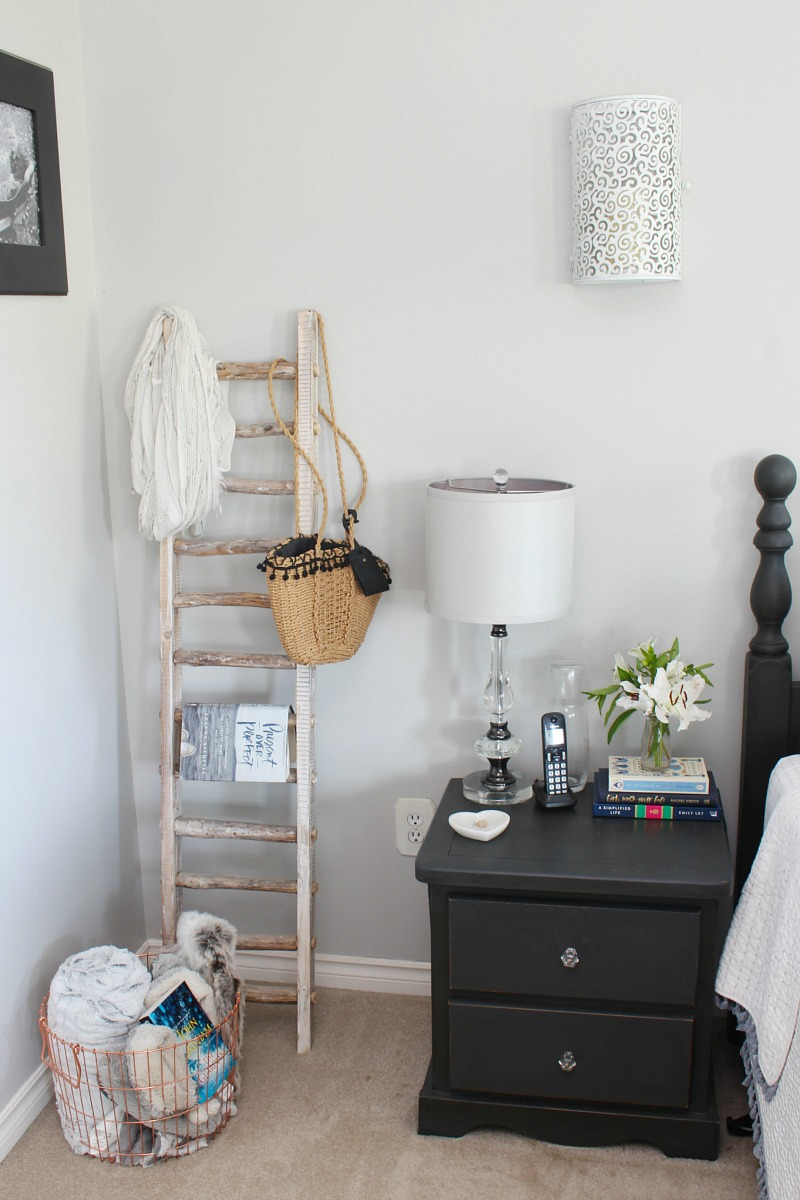 Storage ladder for bedroom.