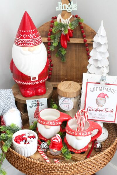 Cute Christmas gnome display.