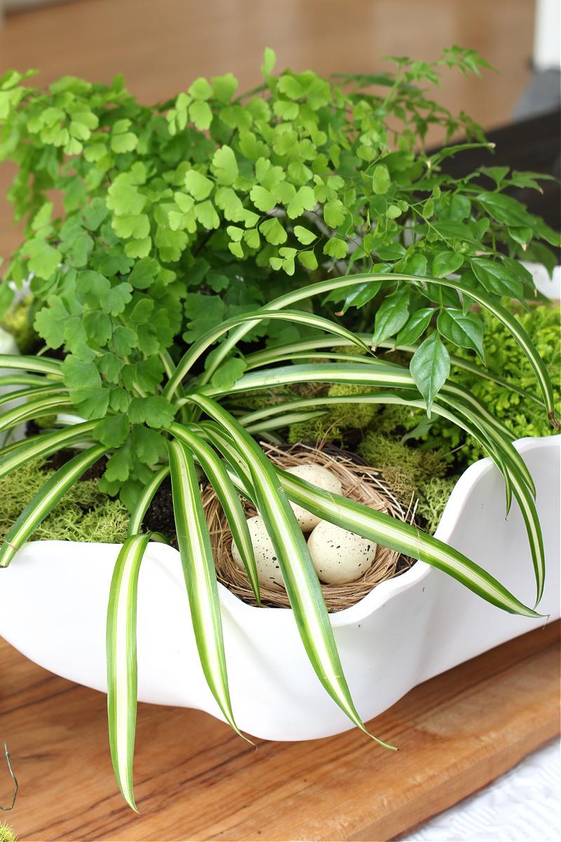 Jolie pièce maîtresse de printemps avec des plantes tropicales, de la mousse et un nid d'oiseau.