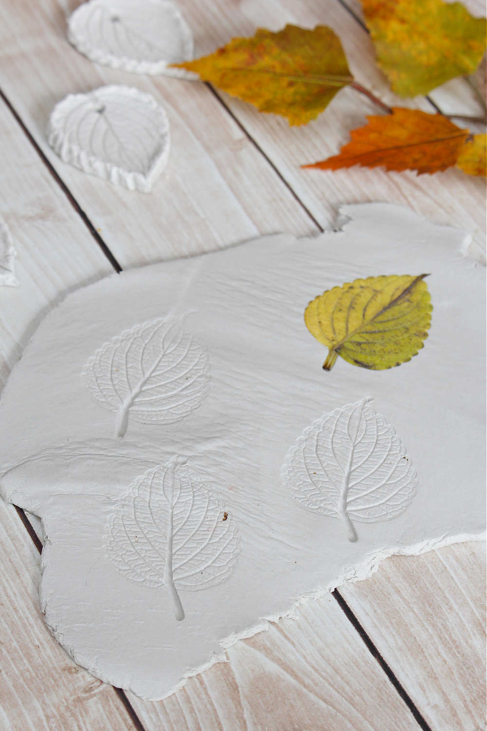 Air dry clay leaves with a real leaf transfer.