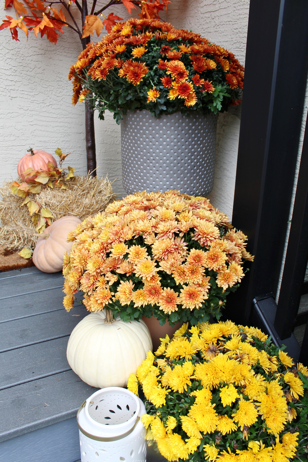 Fall front porch decorated with fall colored mums.